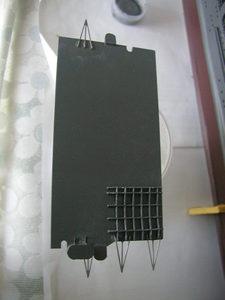 P1011510.JPG