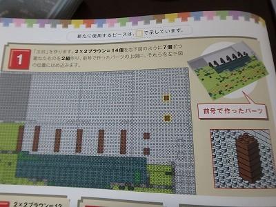s-P8040273.jpg