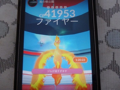 s-P8070050.jpg