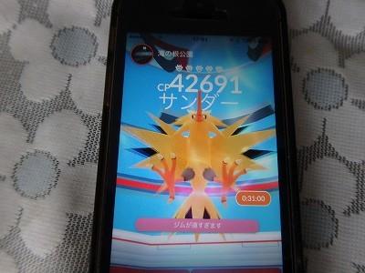 s-P8080050.jpg