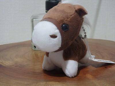s-PC230068.jpg